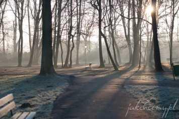 ławeczka w parku widok2
