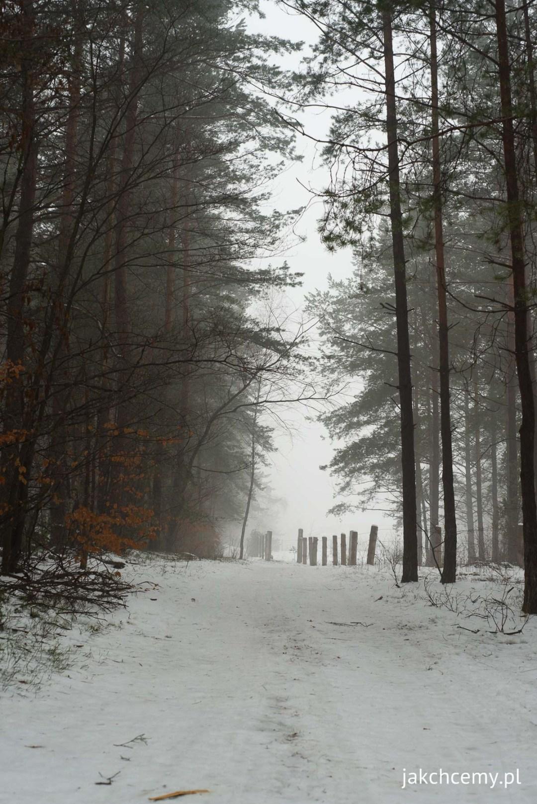 ferie zimowe tydzien drugi 1
