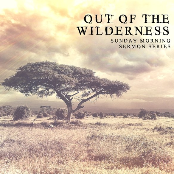 Out of the Wilderness-Social Plug