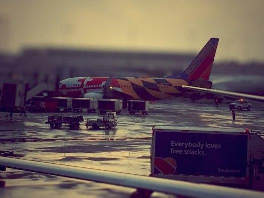 Southwest's Maryland plane [Photo by Robert Haight]