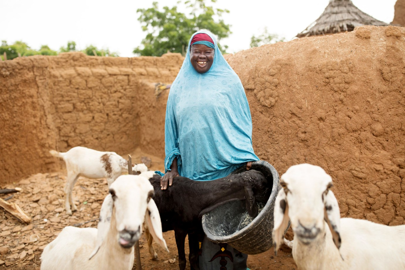 A small farmer feeds and waters her herd of sheep in Tahoua Region, Niger.