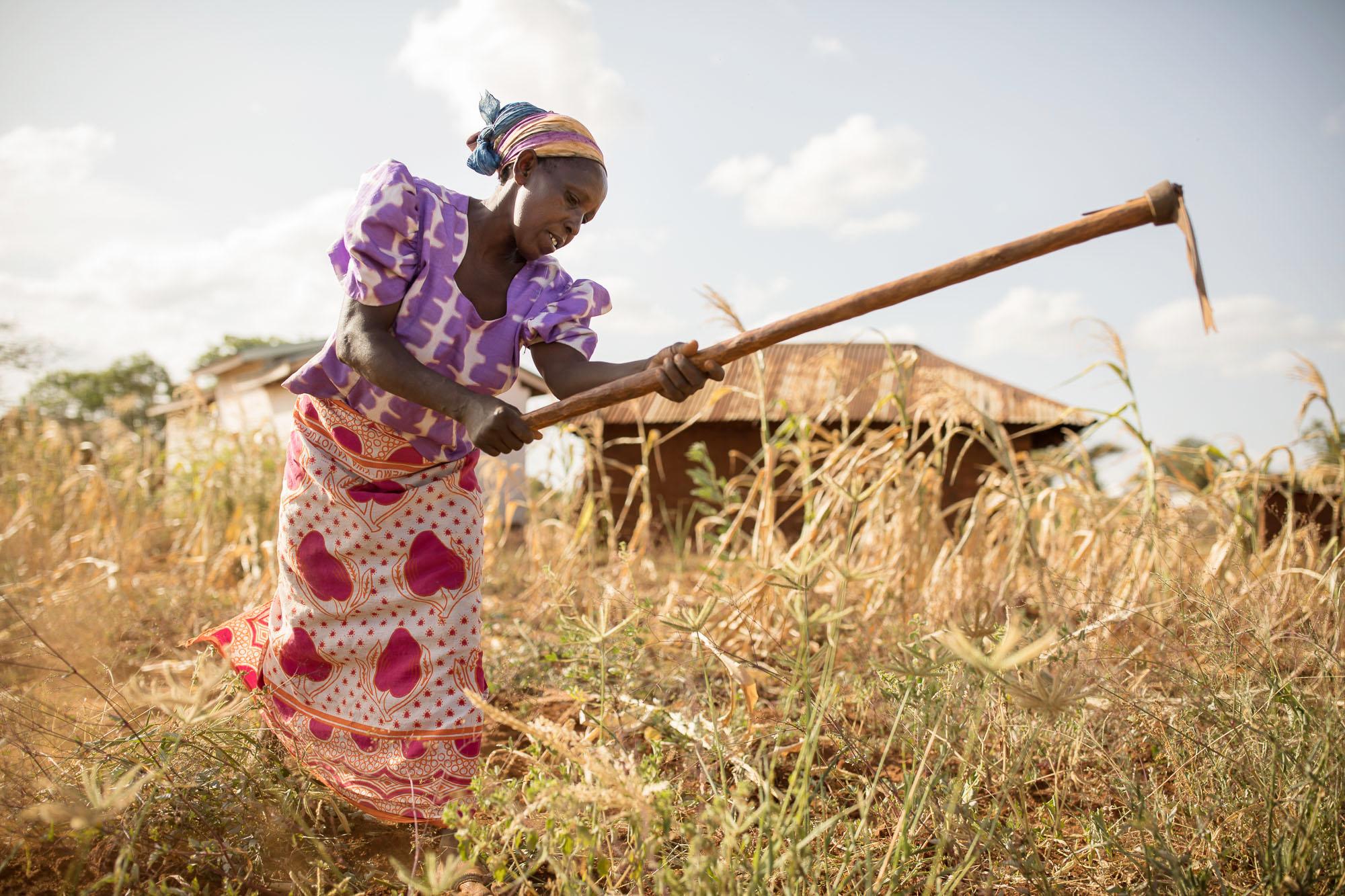 Mueni Ndambuki struggles to farm in dry and infertile farmland in Makueni County, Kenya.