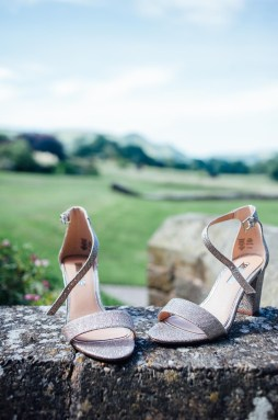 Plas Dinam Wedding Photography-3