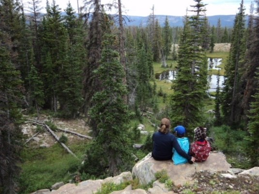 Bird watching with kids Rocky Mountains