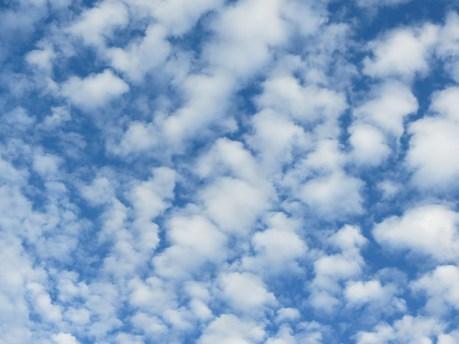types of clouds, altocumulus