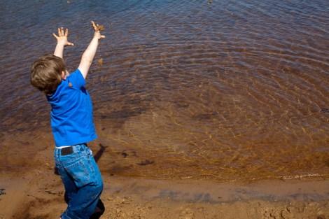safe fish handling, trout