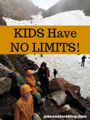 kids have no limits