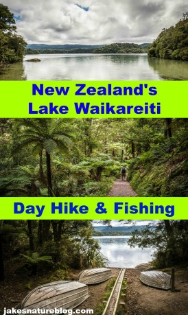 waikareiti-pin blog day hike day walk Nature New Zealand our adventures walk