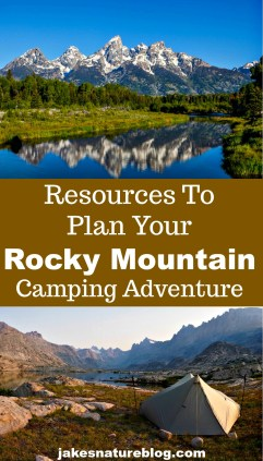 summer camping adventure