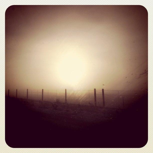 Fog in Lehi