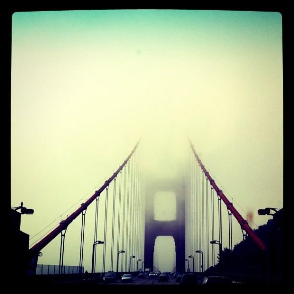 Won't you save me San Francisco #maltreated