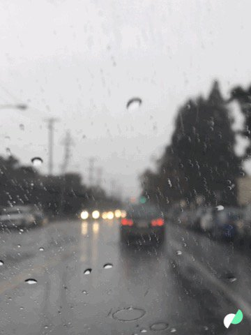 Rainy today… https://t.co/VazzVOO3yr