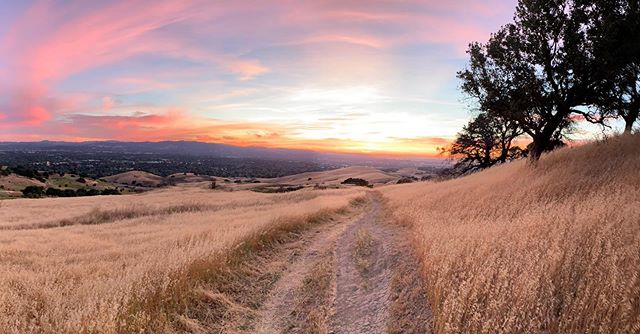 Contra Costa County has all of the colors in full effect last night
