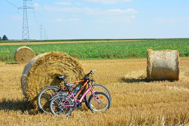 Jak dobrać sakwy rowerowe?