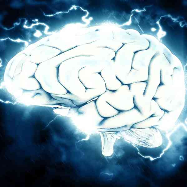 Popular Ways to Improve Brain Power