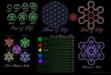 The resonance project, N.Haramein