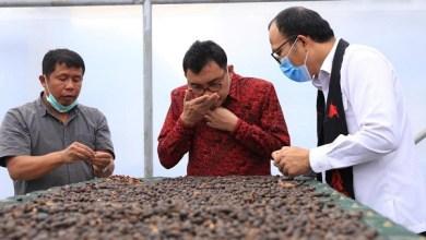 Photo of LPDB-KUMKM Diminta Prioritaskan Pembiayaan ke Koperasi