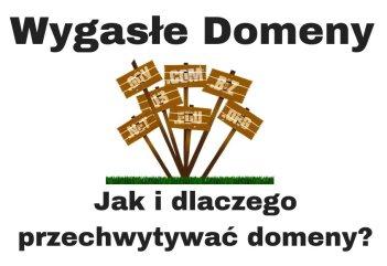 Wygasłe domeny - przechwytywanie żywych domen