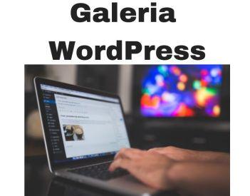 Galeria Wordpress z kategoriami i folderami za Free