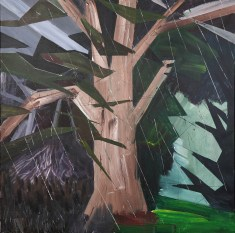 strom / tree, 90x90cm, akryl na plátně / acrylic on canvas, 2012