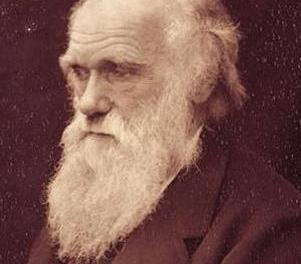 Historias inspiradoras: Charles Darwin, un inadaptado que descubrió el origen de las especies