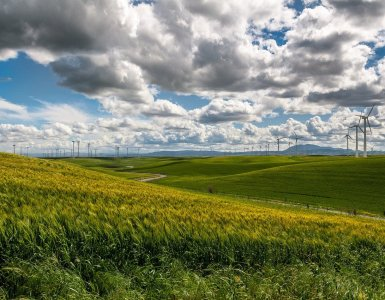 wind farm, wind turbine, electricity