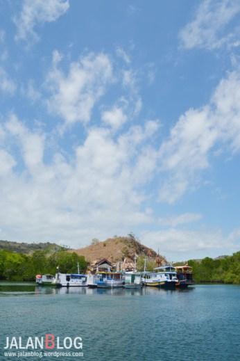 Pelabuhan Loh Buaya, Rinca
