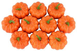 Halloween Favorites Pumpkins
