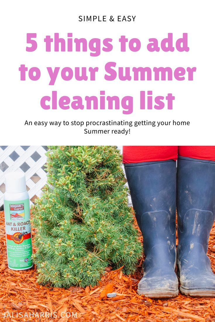 Add these 5 simple things to your Summer Cleaning List - Jalisa Harris
