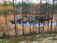 Heinäjärvi syysruskassa, Kannonkoski.