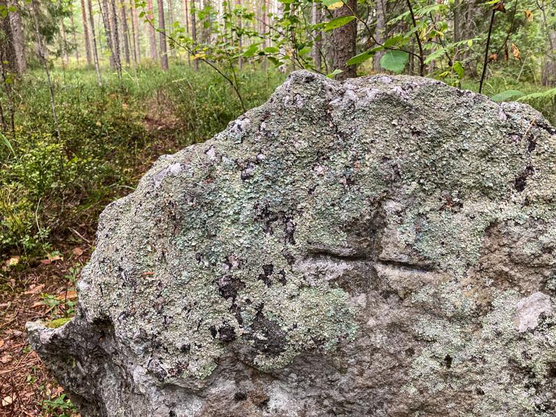 Kivi johon on kaiverrettu risti eli Ristinkivi Kapeenniemessä.
