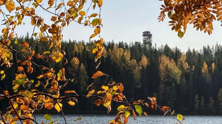 Häähninmäen näkötorni Häähninjärven toiselta puolelta nähtynä.