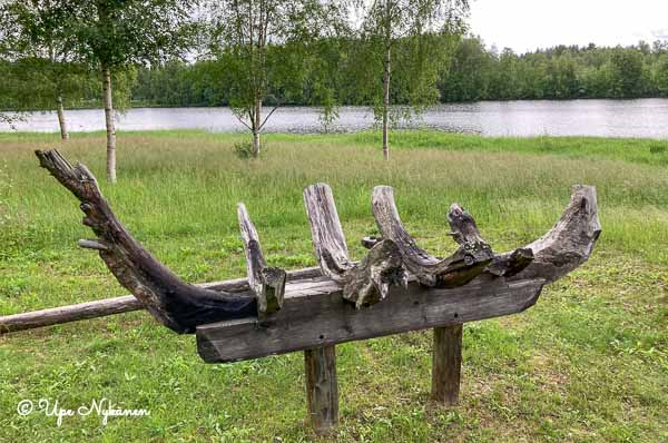 """Osa Timo Jokelan taideteoksesta Jokirannan juurakot (2014), juurakoista muotoiltu puuveneen """"luuranko"""" Iijoen rannalla."""