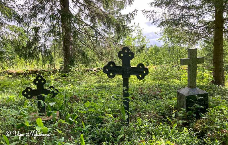 Kaksi vanhaa koristeellista rautaristiä ja yksi kivinen uudempi hautaristi metsäisellä hautausmaalla, Kuivaniemi.