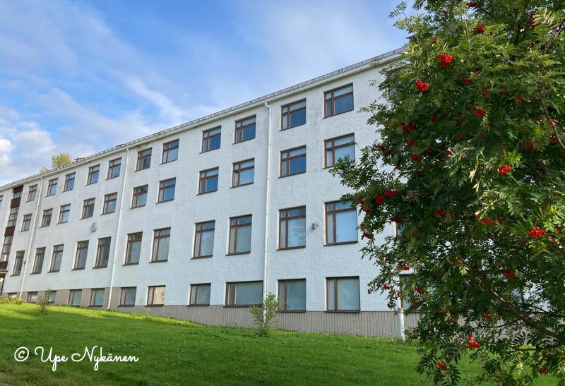 Metsähirvas-hotellin valkoinen nelikerroksinen rakennus ja etualalla pihlaja, jossa punaiset marjat.