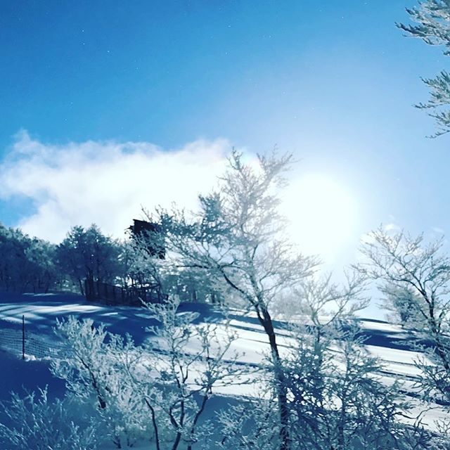 Good Morning#japansnowboardacademy #skijam #やっぱりジャム