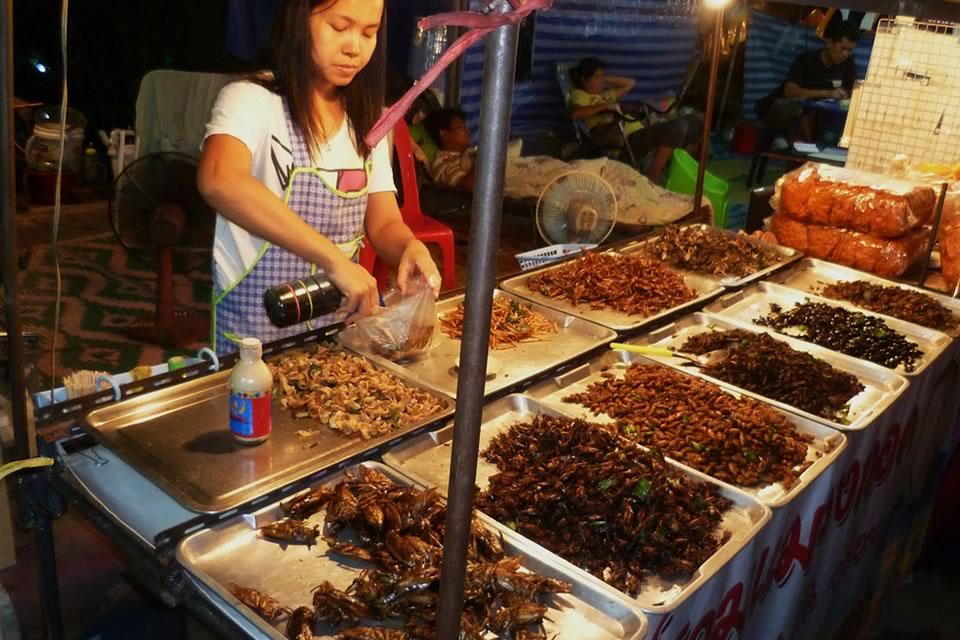 Comidas exóticas: ¿Te atreverías a comerlos?