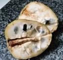 Custard Apple cut in two