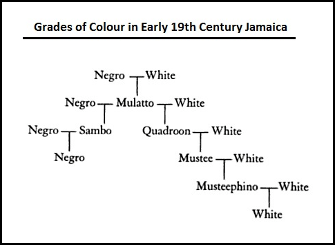 Grades of Colour_19th Century Jamaica