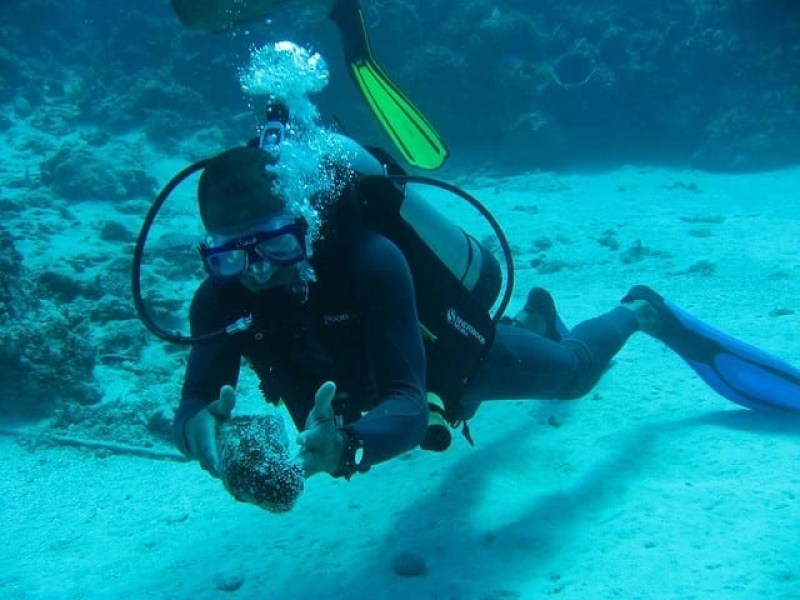 scuba diving Jamaica