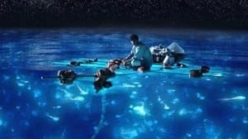 glistening water Jamaica