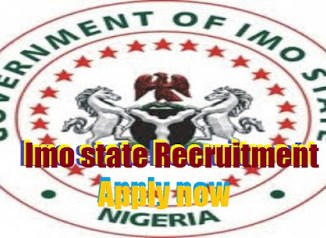 Imo State Government Recruitment imostate gov ng 2020/2021
