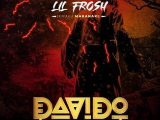 Overview Of Lil Frosh - Davido