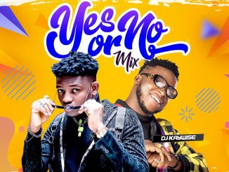Mixtape: DJ Kaywise - Yes Or No mix