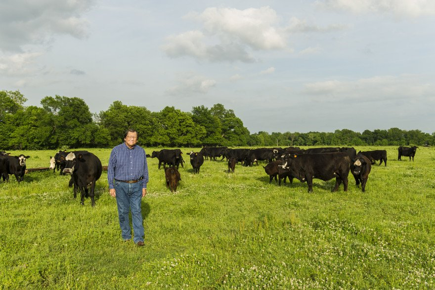 Eddy Red Eagle raises cattle on the land his great grandfather was allotted in the late 1800's.