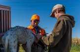 Eric Orsburn helps Cory Stokes attach a collar to one of his dogs prior to hunting.