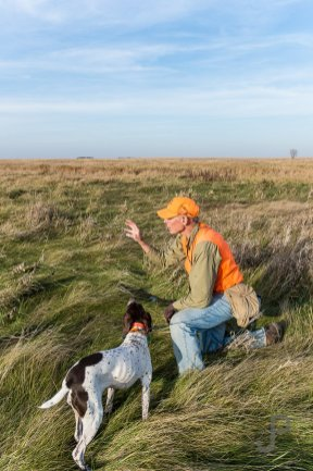 Norm Lippert pauses to let hsi dog drink while he explains that we should hunt the transitional grass area nearby.