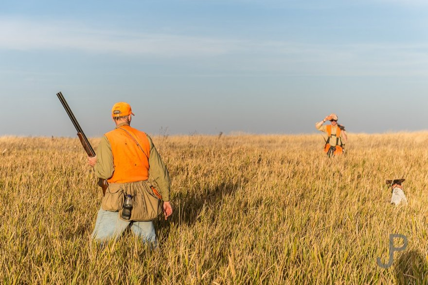 Norm Lippert directs our team through the CRP grass based on his years of pheasant hunting experience.
