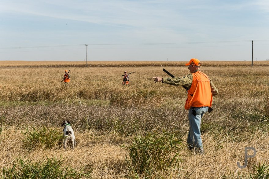 Falling back on his high school coaching background, Norm Lippert directs hunters to push an area where the dogs are working.
