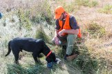 By now Vance Fielder has learned from Lippert to carry a Walmart dog to water his dog Ruger.